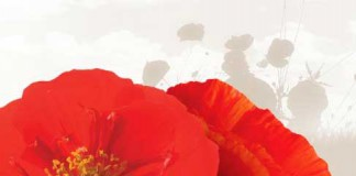 Royal Canadian Legion Poppies